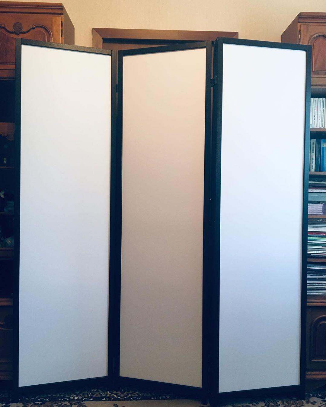 Ширма-перегородка декоративная моющаяся (3-4 панели)